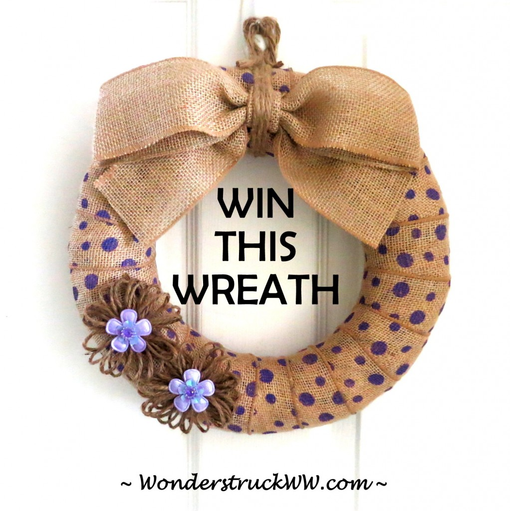 Stop by www.WonderstruckWW.com  and enter our giveaway for a chance to WIN this wreath!